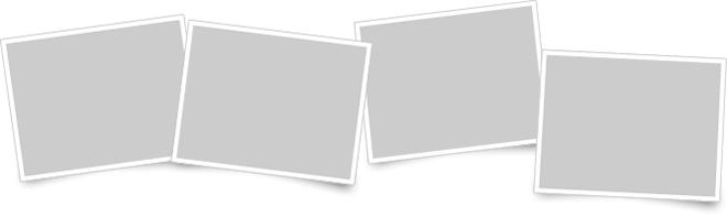 YYプロジェクトの特徴